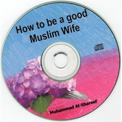 How to be a Good Wife (CD)