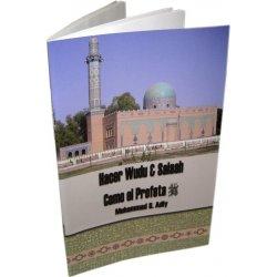 Spanish: Hacer Wudu & Salaah Como el Profeta (S)