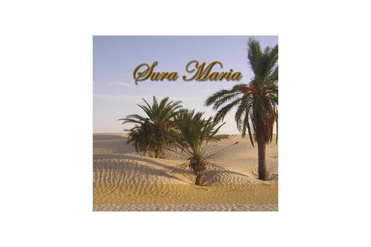 Spanish: Sura Maria (Maryam) with Translation (CD)